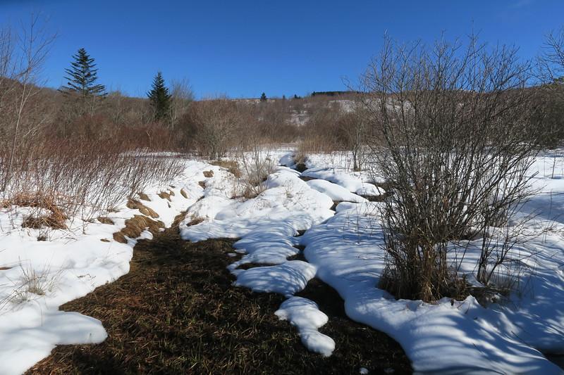 Sam Knob Trail -- 5,400'