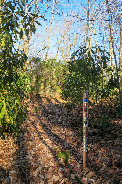 Case Camp Ridge-Seniard Ridge Trail Junction -- 3,440'