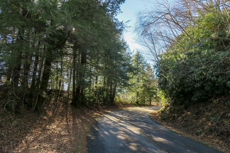 Blue Ridge Parkway -- 4,380'