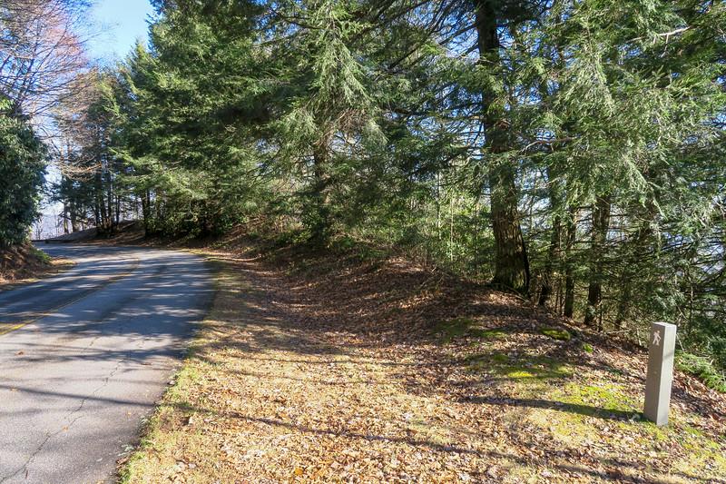 Blue Ridge Parkway @ Case Camp Ridge Trail -- 4,380'