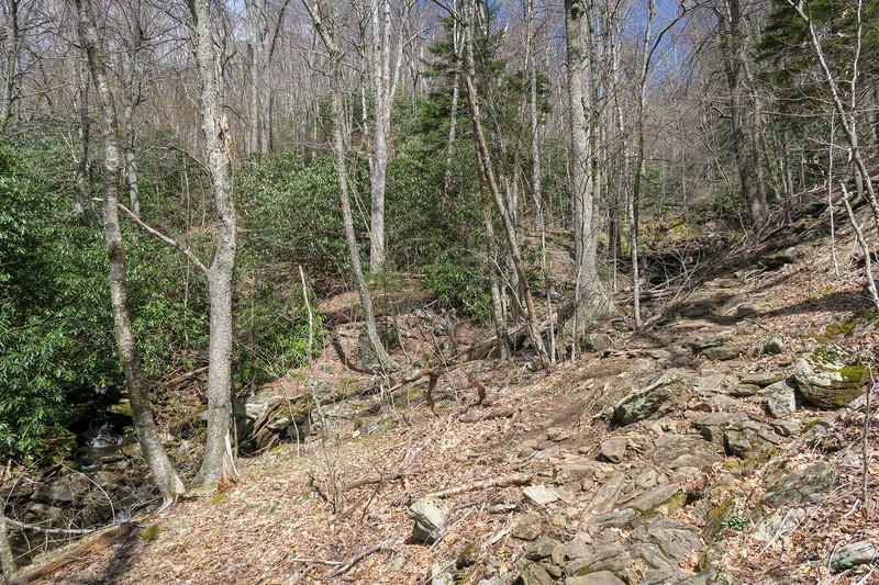 Shining Creek Trail -- 4,850'