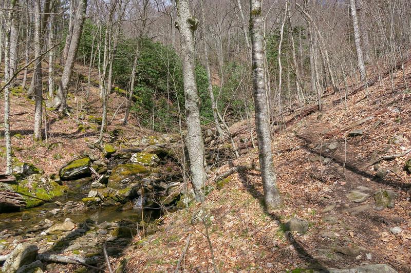 Shining Creek Trail -- 4,800'