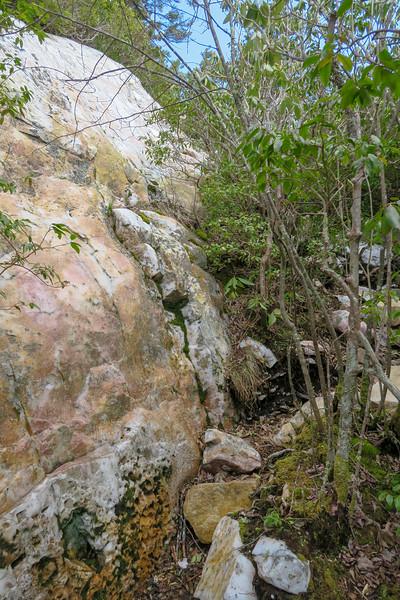 Shining Rock -- 5,870'