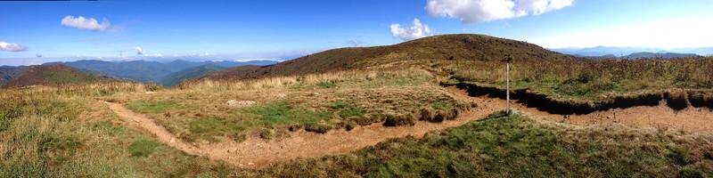 Art Loeb-Art Loeb Spur Trail Junction -- 6,080'