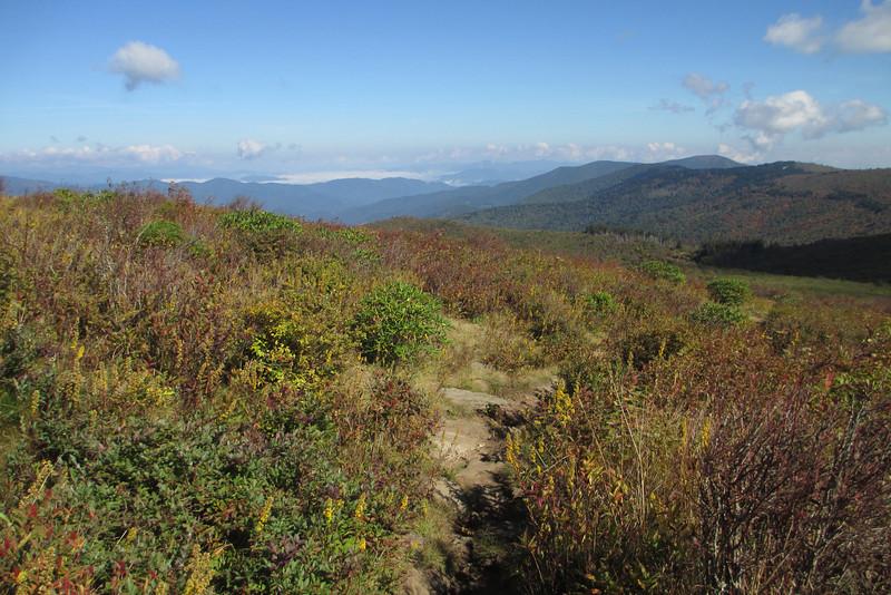 Art Loeb Trail -- 6,000'