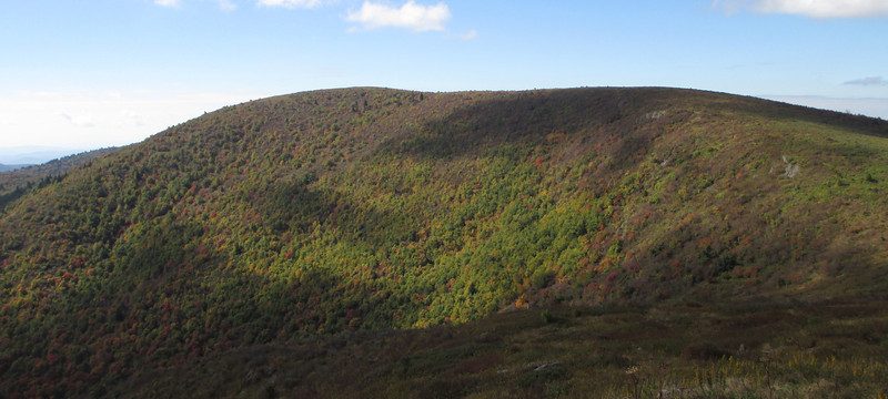 Though not quite 200' higher than Tennent, Black Balsam Knob is downright imposing from its summit... (6,040')