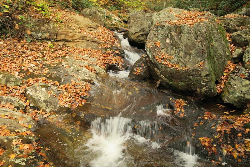 Shuck Ridge Creek - 3,570'