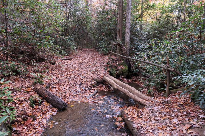 Daniel Ridge Loop Trail - 3,150'