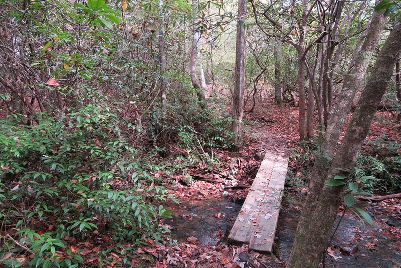 Daniel Ridge Loop Trail - 3,020'