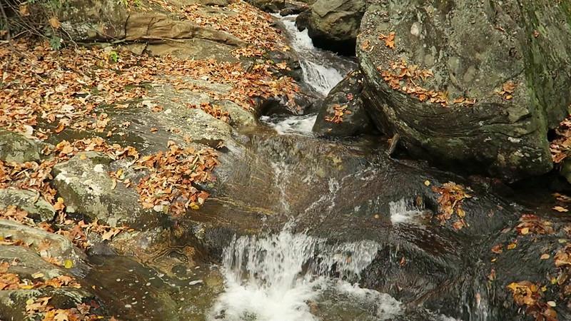 Shuck Ridge Creek Falls - 3,570'