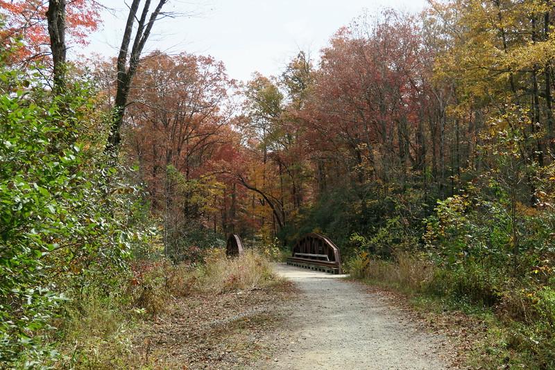 Forest Road 137 (Daniel Ridge Loop Trail) - 2,635'