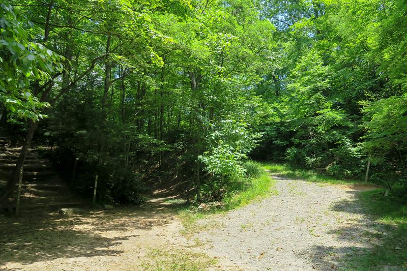 Buckhorn Gap -- 3,550'