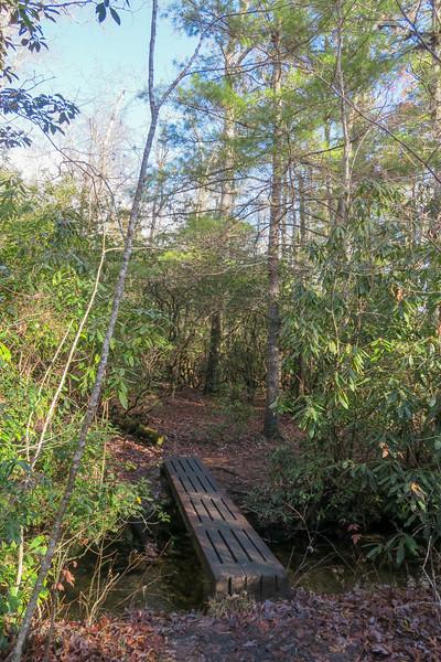 Pink Beds Loop Trail -- 3,220'