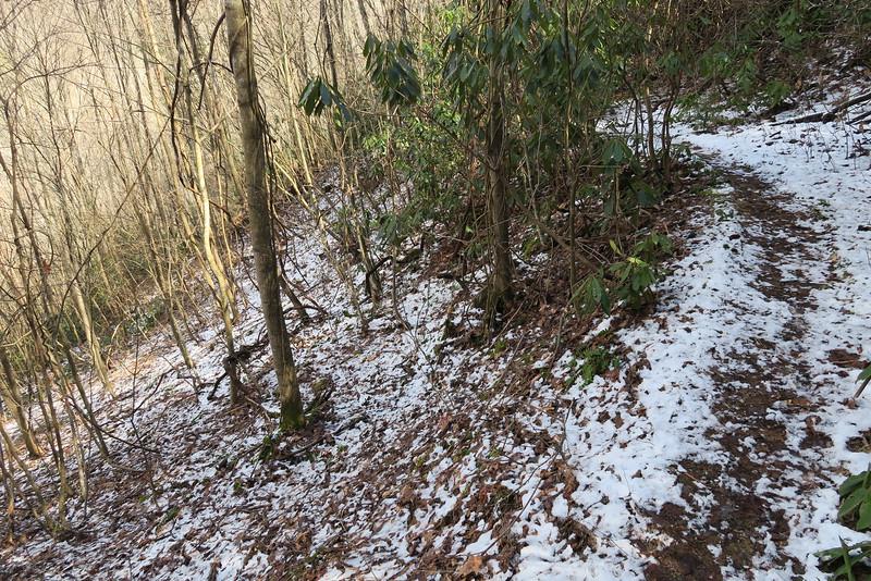 Summey Cove Trail - 3,500'