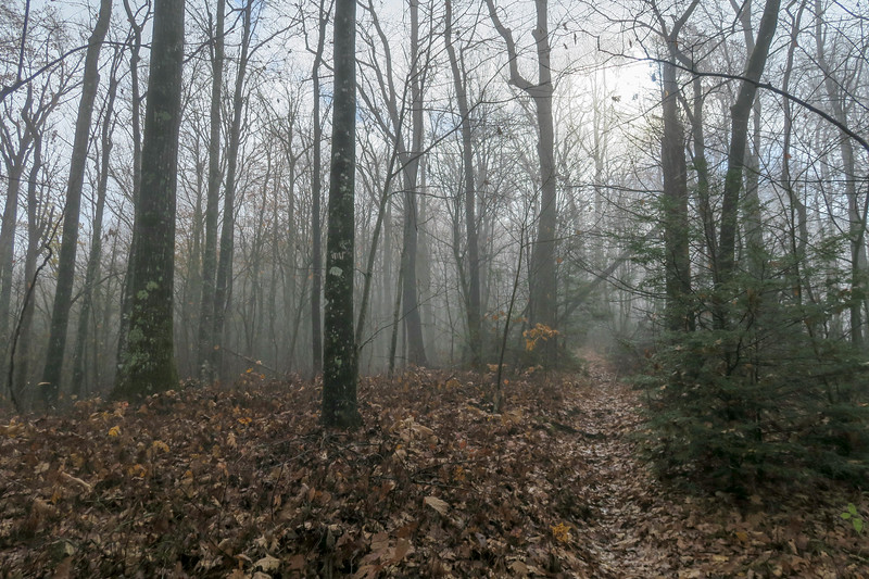 Sunwall Trail -- 3,260'