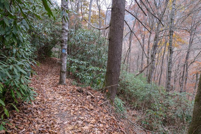 Sycamore Cove Trail -- 2,500'