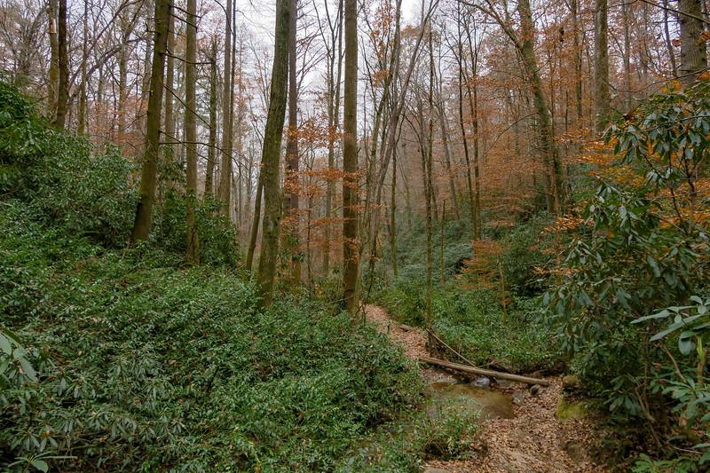 Sycamore Cove Trail -- 2,280'