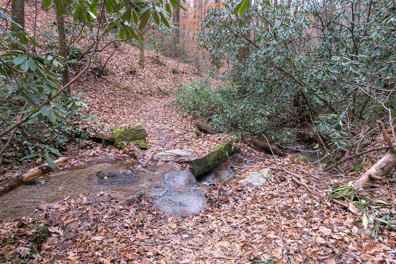 Sycamore Cove Trail -- 2,260'