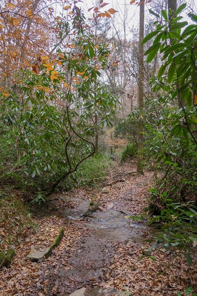 Sycamore Cove Trail -- 2,240'