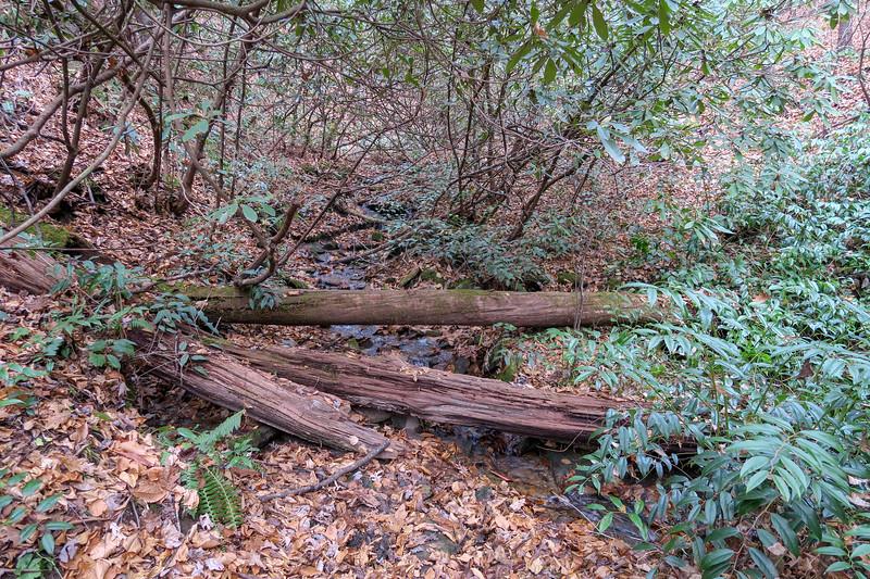 Sycamore Cove Trail -- 2,440'