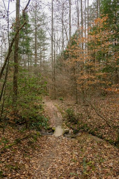 Sycamore Cove Trail -- 2,180'