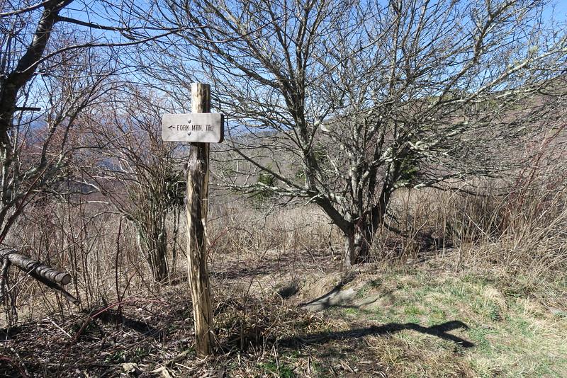 Ivestor Gap-Fork Mountain Trail Junction