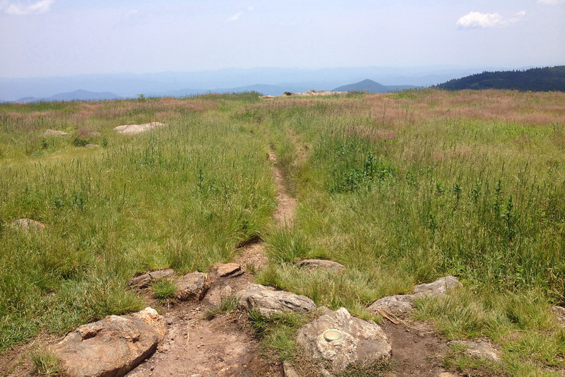 The <i>actual</i> summit of Black Balsam Knob, 6,214'...