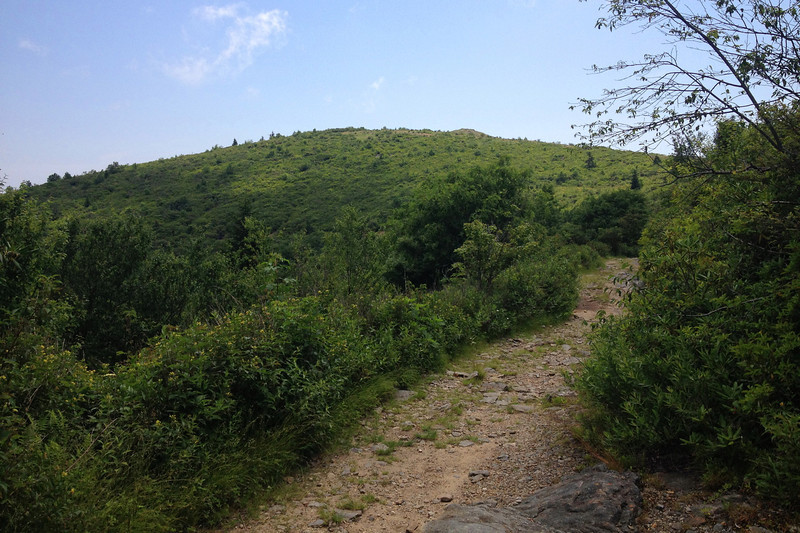 Ivestor Gap Trail