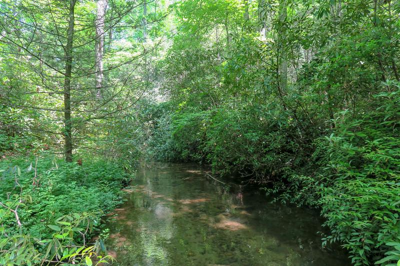 Fletcher Creek -- 2,610'