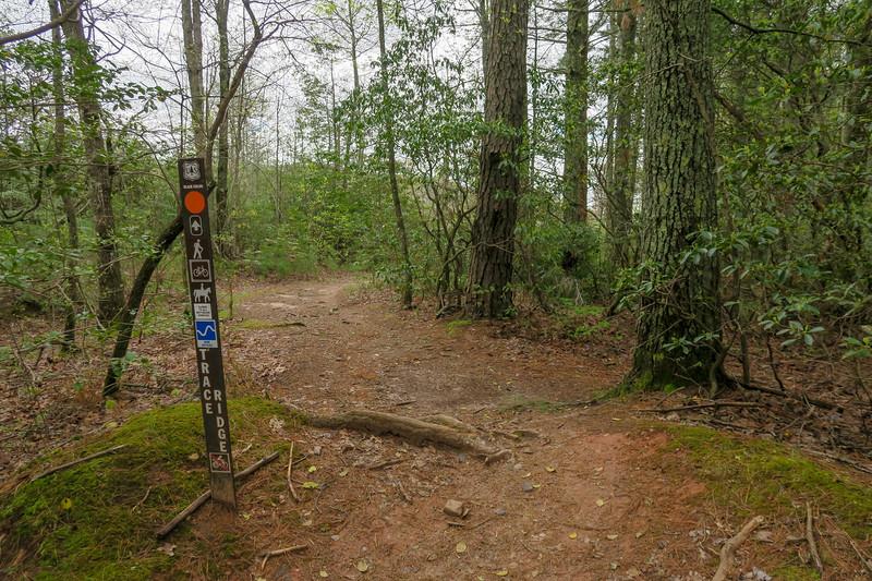 Trace Ridge Trailhead (Trace Ridge Trail Southbound)