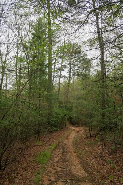 Trace Ridge Trail