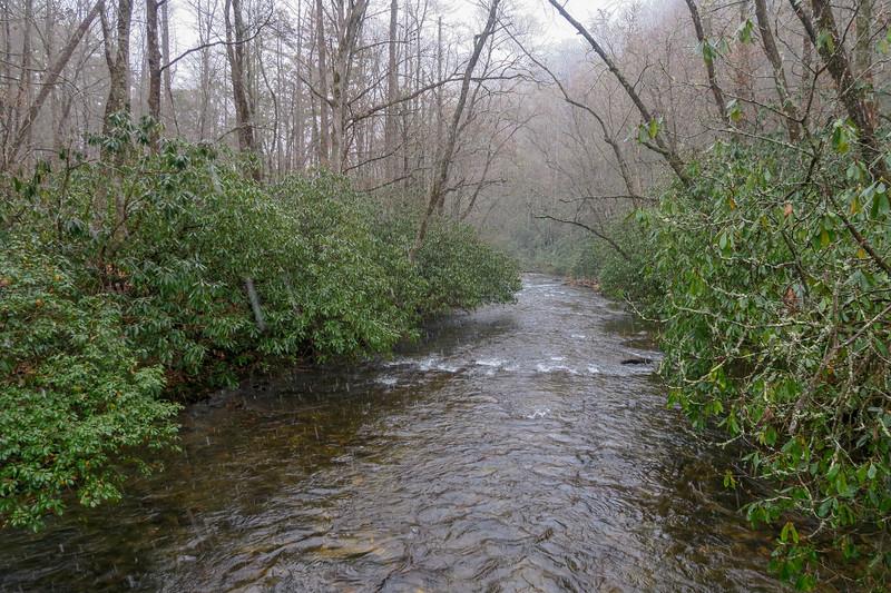 South Fork Mills River -- 2,500'