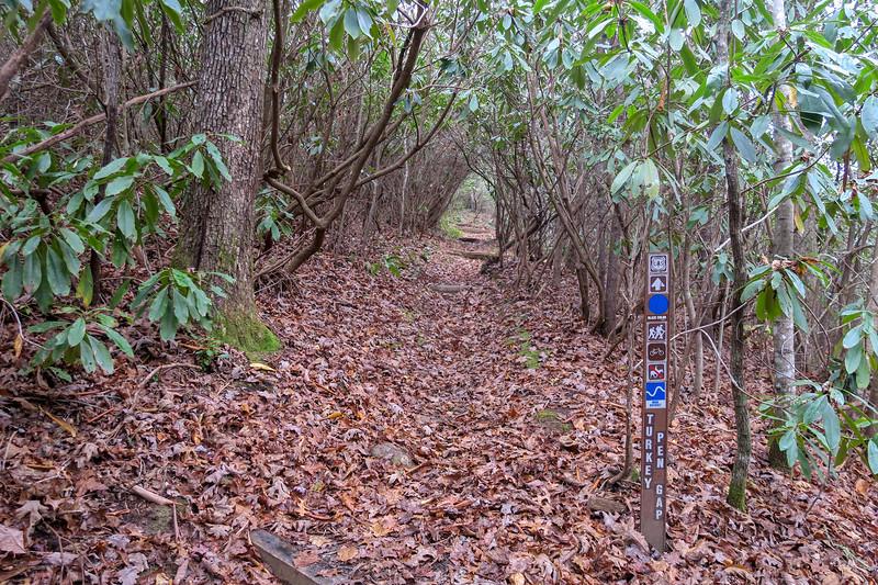 Turkeypen Gap Trail -- 2,660'
