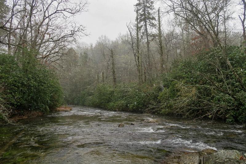 South Fork Mills River -- 2,450'