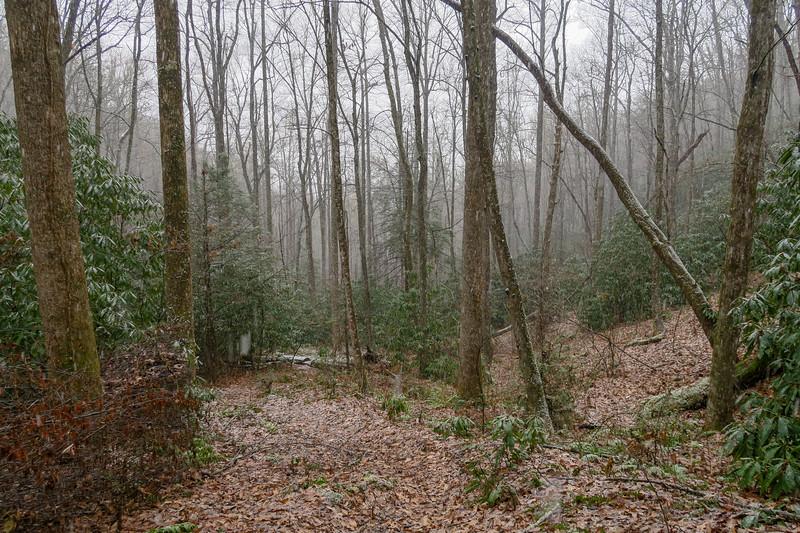 Wagon Road Gap Trail -- 2,900'