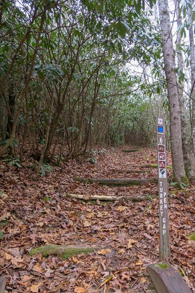 Turkeypen Gap Trail -- 2,650'