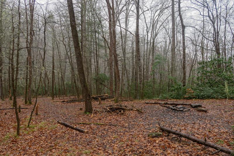 Wagon Road Gap Trail -- 2,550'