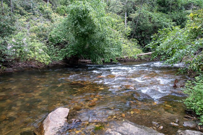 South Fork Mills River (Crossing #4) -- 2,380'