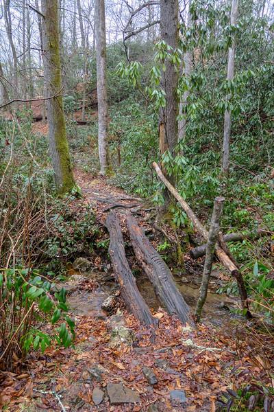 Avery Creek Trail -- 2,540'