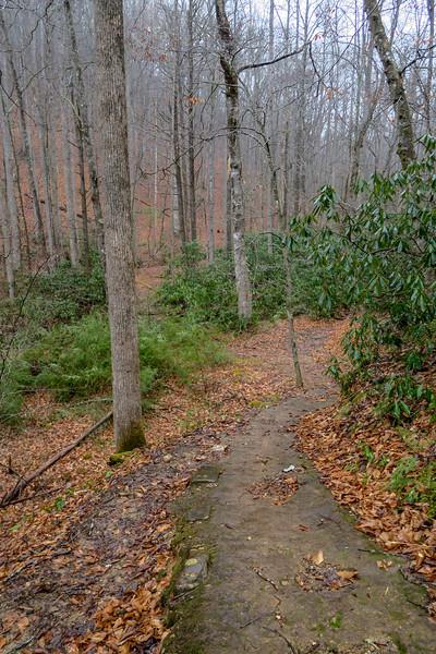 Buckhorn Gap Trail -- 2,650'