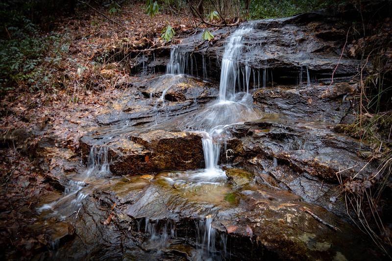 Avery Creek Trail -- 2,530'