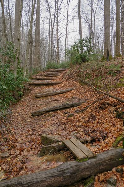 Buckhorn Gap Trail -- 2,630'