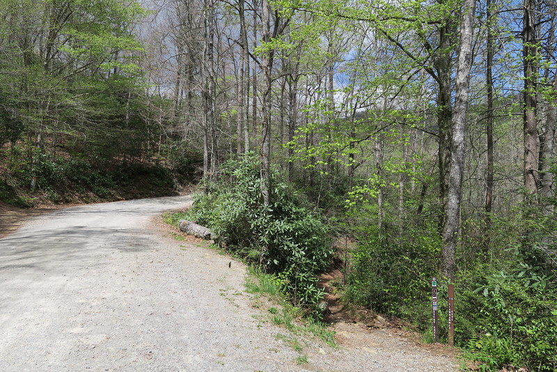 FR-477/Avery Creek Trailhead
