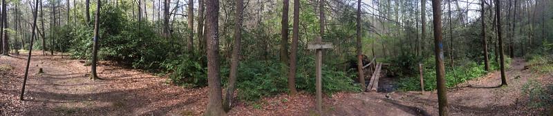 Avery Creek - Buckhorn Gap Trail Junction