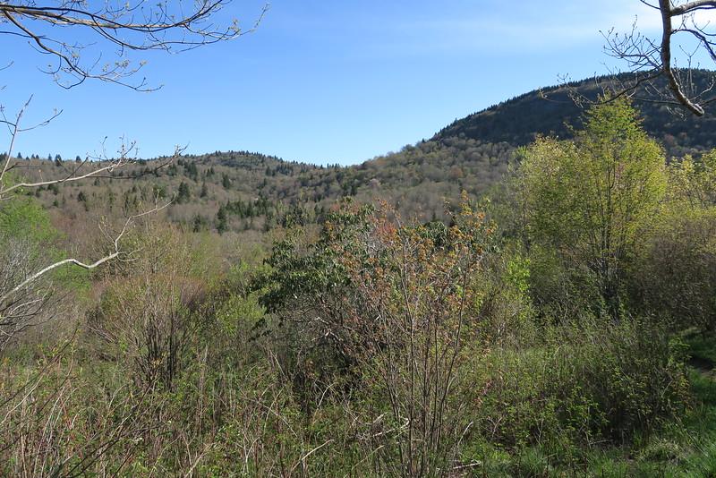 Sam Knob Trail - 5,500'