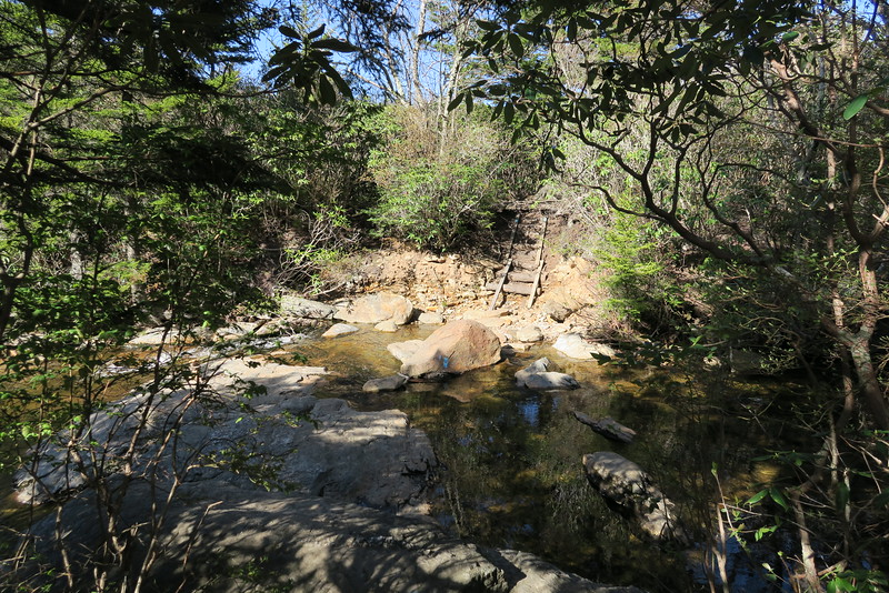 Sam Knob Trail - 5,400'