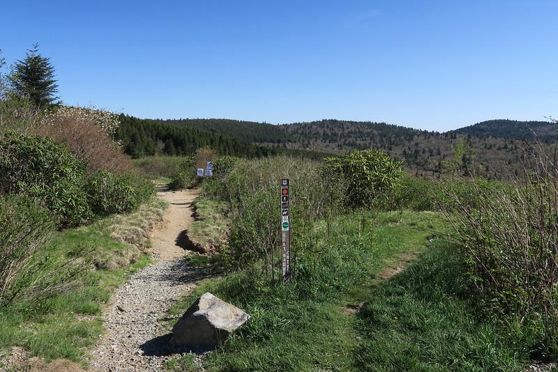 Flat Laurel Creek Trailhead - 5,800'