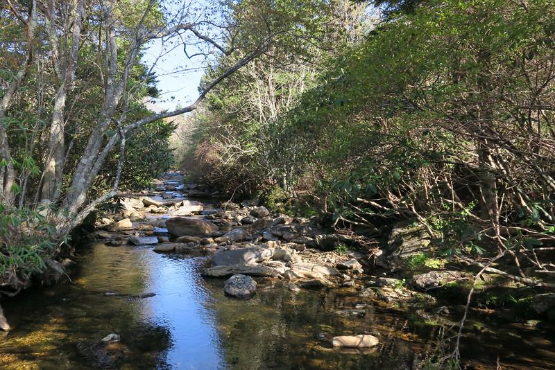 Flat Laurel Creek - 5,400'