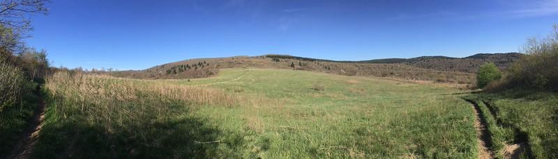 Sam Knob Trail - 5,650'