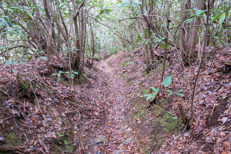 Vineyard Gap Trail -- 2,400'